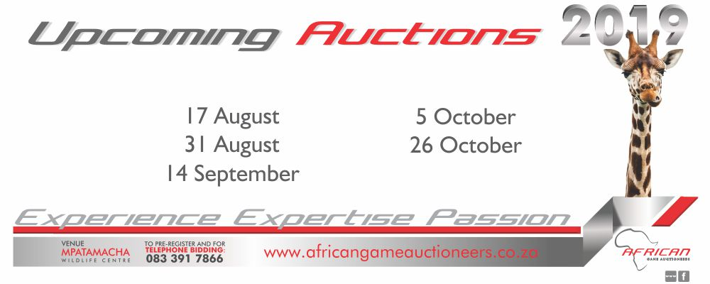 Upcoming auctions Aug